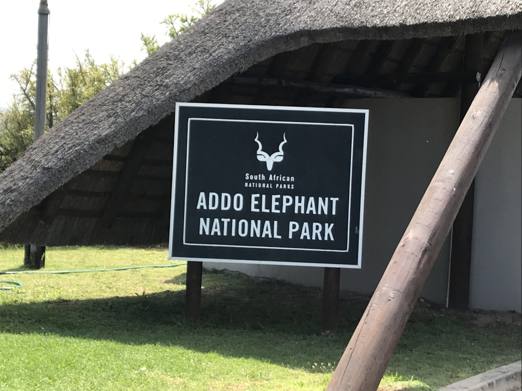 Addo Elefant Park und Zuurberg Mountains